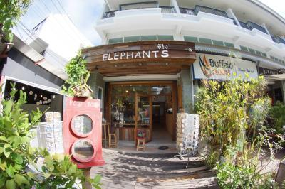 Elephants ช๊าง